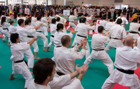 Campionatul Mondial Unificat de Arte Martiale ~ 2017