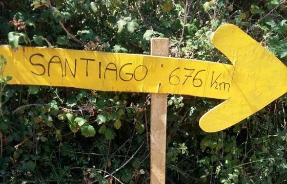 El Camino. Pentru educație