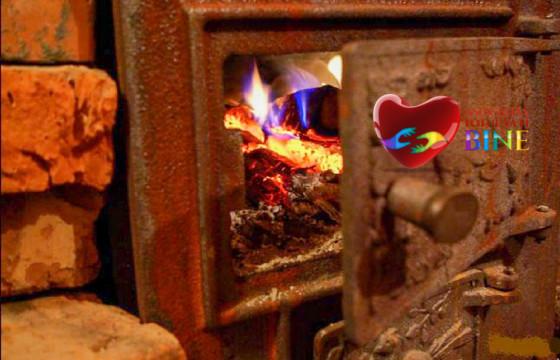Lemne de foc pentru iarna