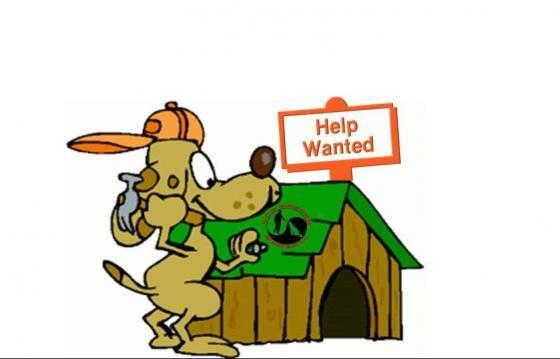 Renovare Adapost Dog Rescue Romania