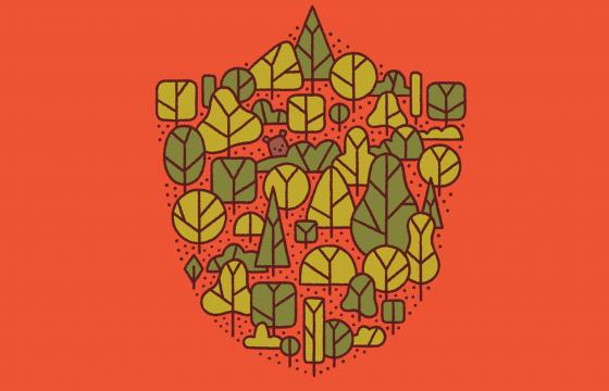 Salvarea pădurilor din România