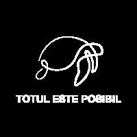 TOTUL ESTE POSIBIL
