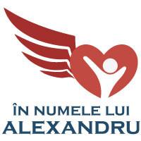 Asociația ÎN NUMELE LUI ALEXANDRU